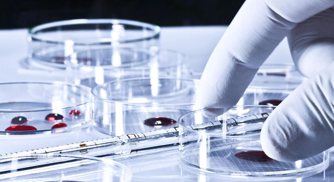 Blood-borne Pathogens & Exposure Control Plan Certification
